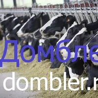 28.04.2017. Крупный концерн из Китая планирует построить молочный завод в Башкирии